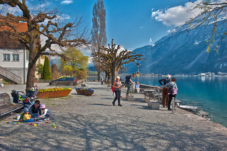 Happy Hour , Spring time is hear.   Brienz  ,Canton of Bern , Switzerland No. 8360.