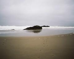 Oregon coast (amy c. hill) Tags: oregon coast pentax67ii portra400 mediumformatfilm
