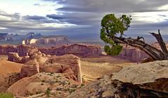 Hunts Mesa Sunrise III (Spence Fairbanks) Tags: huntsmesa monumentvalley arizona southwest autofocus d90 goldcollection