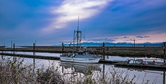 Float alone (Christie : Colour & Light Collection) Tags: garrypoint steveston richmond bc canada dusk twilight boat fishingboat scotchpond seiner dock