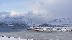 it's all about hibernation (lunaryuna) Tags: norway lofoten lofotenislands lofotenarchipelago landscape seascape winter season seasonalwonders snow ice marina snowedin hibernation boats sea icesheet mountainrange panoramicviews lunaryuna