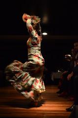 DSC_0806 (rusesmeralda) Tags: flamenco madrid spain dancing dance baile bailaor bailaora authentic tradition