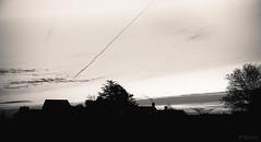 Dusk (Sohmi ︎) Tags: france french saintphilbertdegrandlieu paysdelaloire loireatlantique dusk crépuscule bretagne brittany sunrise ciel sky nuages clouds noiretblanc blackandwhite monochrome camaieu versleciel skyward arbres trees morning extérieur outside paysage landscape nantes naoned nikond810 tamronsp2470mm ©sohmi