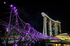 Helix Bridge & MBS (AdeyH) Tags: singapore marina bay sands helix bridge city urban asia night lights