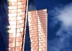 Sunlit Exterior (manxmaid2000) Tags: birmingham nia nationalindoorarena reflection blue gold copper facade city