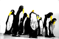 P-P-Pick up? (Jason 87030) Tags: art gallery lauraford margate turner exhibition black white yellow beak display 2017 birds suit costumes feathers mono blanc noir bbw bw arty artistic creative effect context materials sculpture dark funny amusing odd weird strange fabric