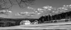 a small farm in maine (jtr27) Tags: sdq1892fr01e jtr27 sigma sd quattro sdq 30mm f14 dc hsm art blackandwhite bw nb landscape rural farm maine newengland
