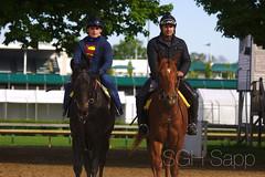 IMG_8334_01 (Sagrasa) Tags: churchilldowns kentucky horseracing thoroughbred