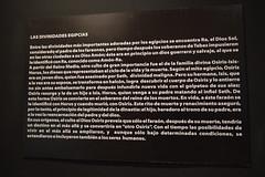 Tutankamón 007 (on_toi?) Tags: rey faraón egipto sarcófago momias momificacón museo tumba tutankamón