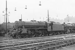 44812 (Gricerman) Tags: black5 black5class 460 willesden willesdenshed 44812 steam steambr steammidland midland midlandsteam midlandsteambr br britishrailways brsteam brmidland lms
