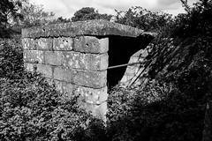 Arne AA Battery - Photocredit Neil King-18 (Neilfatea) Tags: arne aa antiaircraft wwii bw decay nature reclaims