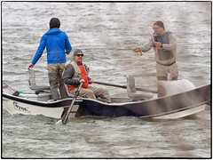 _4150109 (geelog) Tags: alberta bowriver calgary driftboat flyfishing water ab canada