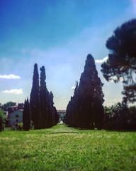 #oradaria #merate #parcobelgioioso #villanelgioso #inlombardia #igerslecco @in_lombardia @igers_lombardia @igerslecco @igersitalia #igersitalia (Davide Cacciatori) Tags: instagramapp square squareformat iphoneography uploaded:by=instagram skyline
