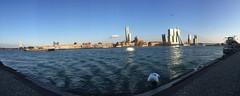 Skyline of Rotterdam (marieckejanssen) Tags: rotterdam stad river rivier brigde brug architecture nieuwe maas blindphotographer