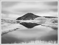 From my point of view (adam_pierz) Tags: iceland myvatn lake infrared reflections mountain water blackandwhite monochrome clouds micro43 microfourthirds panasonic g5