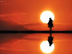 Cowboy sunset... (Kerriemeister) Tags: compostie photomanipulation digital art fantasy sunset cowboy horse silhouette silhouettes photoshop imagination reflection water