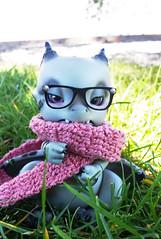 Garak (vanyrei) Tags: aileendoll dragon bjd pet littledragon nerdy nerd eyeglass scarf pink lake doll cutie kawaii