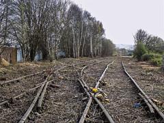 Cashmore's Siding (Jason_Hood) Tags: disused abandoned railway railroad greatbridge cashmores southstaffordshirerailway