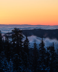 The Mt Tam Effect (Maddog Murph) Tags: mt tam antithesis yosemite valley fog mist long exposure snow trees sunset glacier point nps california national park winter scene shoe travel explore adventure back country rim