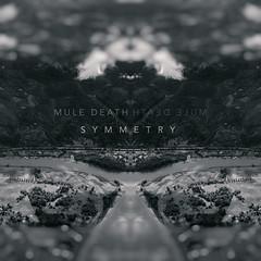 Mule Death - Symmetry (Beau Finley) Tags: album ep music beaufinley coverart sauvieisland oregon willametteriver cover art square text muledeath symmetry ma marksharpe