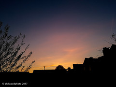 112/365 - Boring sunset (phil wood photo) Tags: 2017 2017photofun 365 boring day112 evening phone s7 silhouette sky sunset