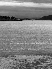 Bay to Gate (melystu) Tags: goldengate bay bridge sanfrancisco bayarea blackandwhite