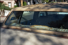 Caddy (ADMurr) Tags: leica m4 kodak 50mm summicron car burst upholstery seat roof leaf shadow cab679