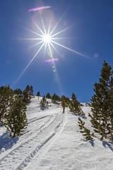 Siscaró, Principat d'Andorra (kike.matas) Tags: canon canoneos6d canonef1635f28liiusm kikematas siscaró canillo andorra andorre principatdandorra pirineos paisaje contraluz sol arboles raquetas senderismo nature nieve cielo estrella lightroom4 андорра