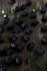 Blackberries (ashley_tarr) Tags: berries blackberries