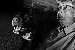[Village People] (Luca Napoli [lucanapoli.altervista.org]) Tags: street blackandwhite villagepeople multishot bustogarolfo gildenesque sonyrx100 festasel flashseries candidflashportrait