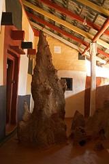 Termite mound (bag_lady) Tags: india village tribal villagehouse termitemound cobras adivasi gadaba tribalvillage kondh ridal earthasia odisha sworissa