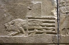 Lion Hunts of Ashurbanipal, lion released into arena (profzucker) Tags: sculpture london art ancient iraq lion palace relief beginning britishmuseum gypsum tigris mosul hunt assyrian excavated ashurbanipal neoassyrian ninevah rassam 645bce