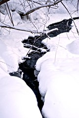 Winter in Russia (Sasha_mac) Tags: trees winter snow color texture nature water nikon tour russia 18105      d90