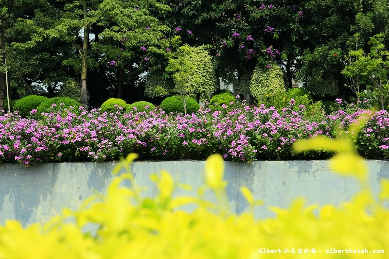 【高科技園區】廣東東莞.松山湖科技產業園區 (12)