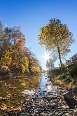 New Creek (Western Maryland Photography) Tags: new creek westvirginia canoneos7d rokinon8mmf35fisheye