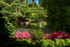 Royal Tasmanian Botanical Gardens, Hobart (Chris&Steve) Tags: tag australia tasmania hobart botanicgarden botanicalgardens p100 queensdomain royaltasmanianbotanicalgardens 2013 v100i