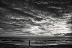 a time to keep silence (Bec .) Tags: ocean sunset sky bw man water clouds canon walking landscape adelaide 1855mm southaustralia henleybeach nd8 450d atimetokeepsilence rbat75 projectitsgettingdark altostratusperhaps notsurewhattypeofcloudstheseareneedacloudnerdtohelpme