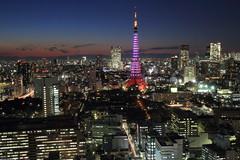 Tokyo tower with pink lighting. (cate) Tags: tokyo tokyotower   pinklighting vision:sky=0809 vision:dark=0726 vision:clouds=0701 vision:outdoor=097 vision:plant=0649  supportforpreparatorystudents