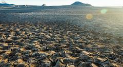 Folsom Lake (Ro-Ro-photo) Tags: sunrise folsom dry drought folsomlake newtopographics californiadrought