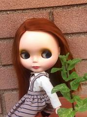 My new girl:Ruby <3