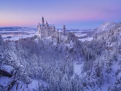 The Fairytale Castle (v-_-v) Tags: ybs2017 germany europe bavaria neuschwanstein castle fairytale bluehour snow trees forest schwangau landscape winter