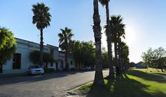 CONTRALUZ - BACKLIGHTING (jpi-linfatiko) Tags: contraluz backlighting coloniadelsacramento palmeras colonial antiguo old nikon d5200 sigma1770 palms amanecer morning retro pasado past