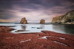 The twins (vladi garcía) Tags: gemelas hendaia hendaya france francia hendaye mar sea beach algas