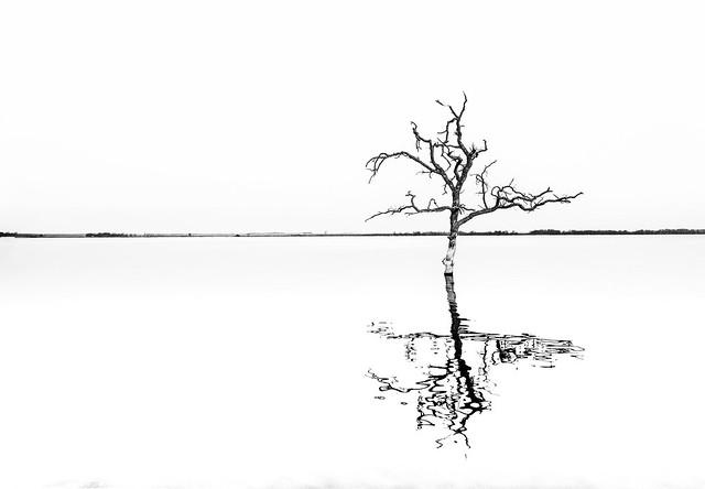 Stump Lake 4.2