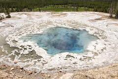 Artemisia Geyser (YellowstoneNPS) Tags: artemisiageyser uppergeyserbasin yellowstonenationalpark