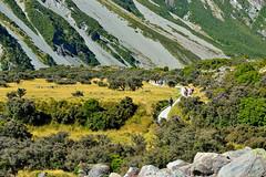 Mountain walks (T Ξ Ξ J Ξ) Tags: newzealand aoraki mountcook d750 nikkor teeje nikon2470mmf28 day mountain cook walks