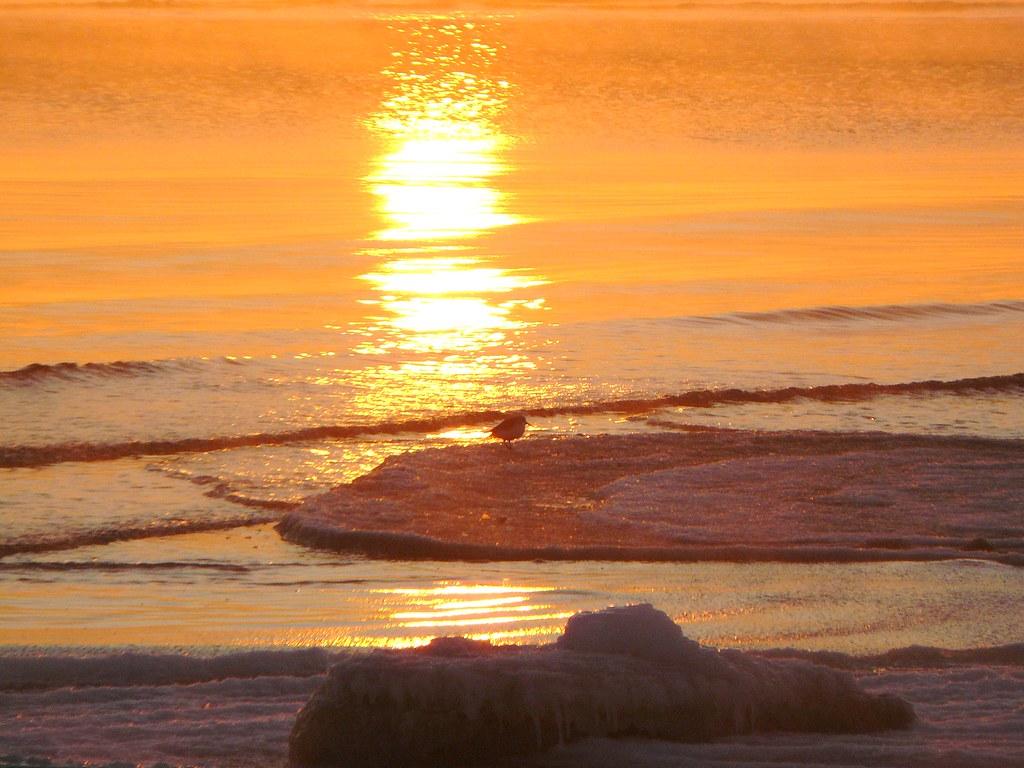 Sonnenaufgang 16.01.10