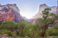 Burst of Sun at Zion (Samantha Decker) Tags: canonef24105mmf4lisusm canoneos6d courtofthepatriarchs nps samanthadecker ut utah zionnationalpark grandcircletour