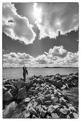 wildboy (Jan-Jacob Luijendijk) Tags: carnisse grienden carnisselande barendrecht zuidholland nederland netherlands fuji fujifilm fujinon xt1 1024mm