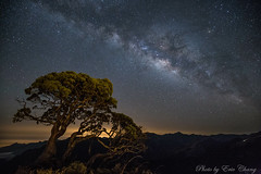 高山花椰菜 銀河 Galaxy MilkWay (Liao Joseph) Tags: galaxy milkway night lights nightshot nightlight taiwan mountains stars